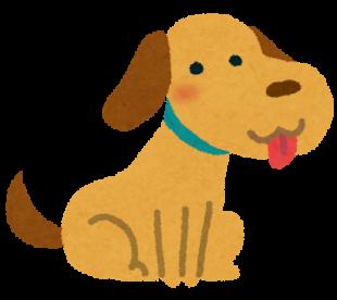PuppyBeansのしつけについてのイメージ